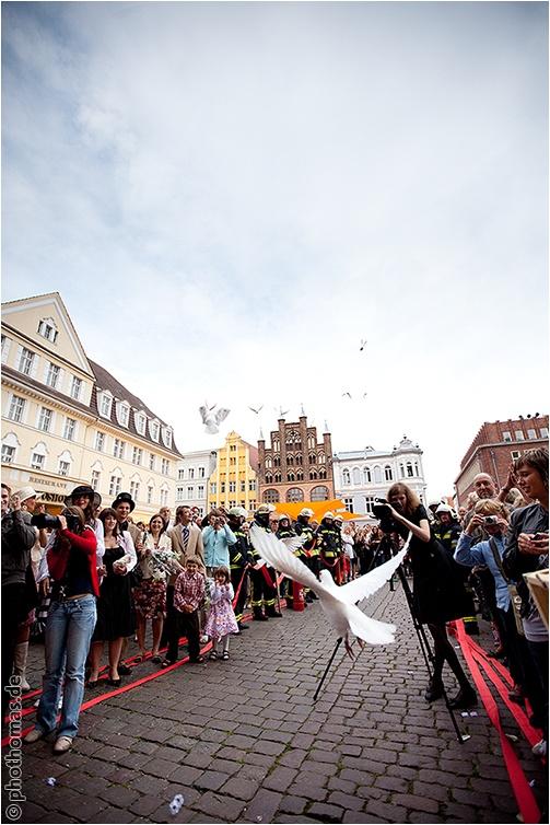 Als Hochzeitsfotograf im Standesamt Stralsund und in der alten Brauerei (27)