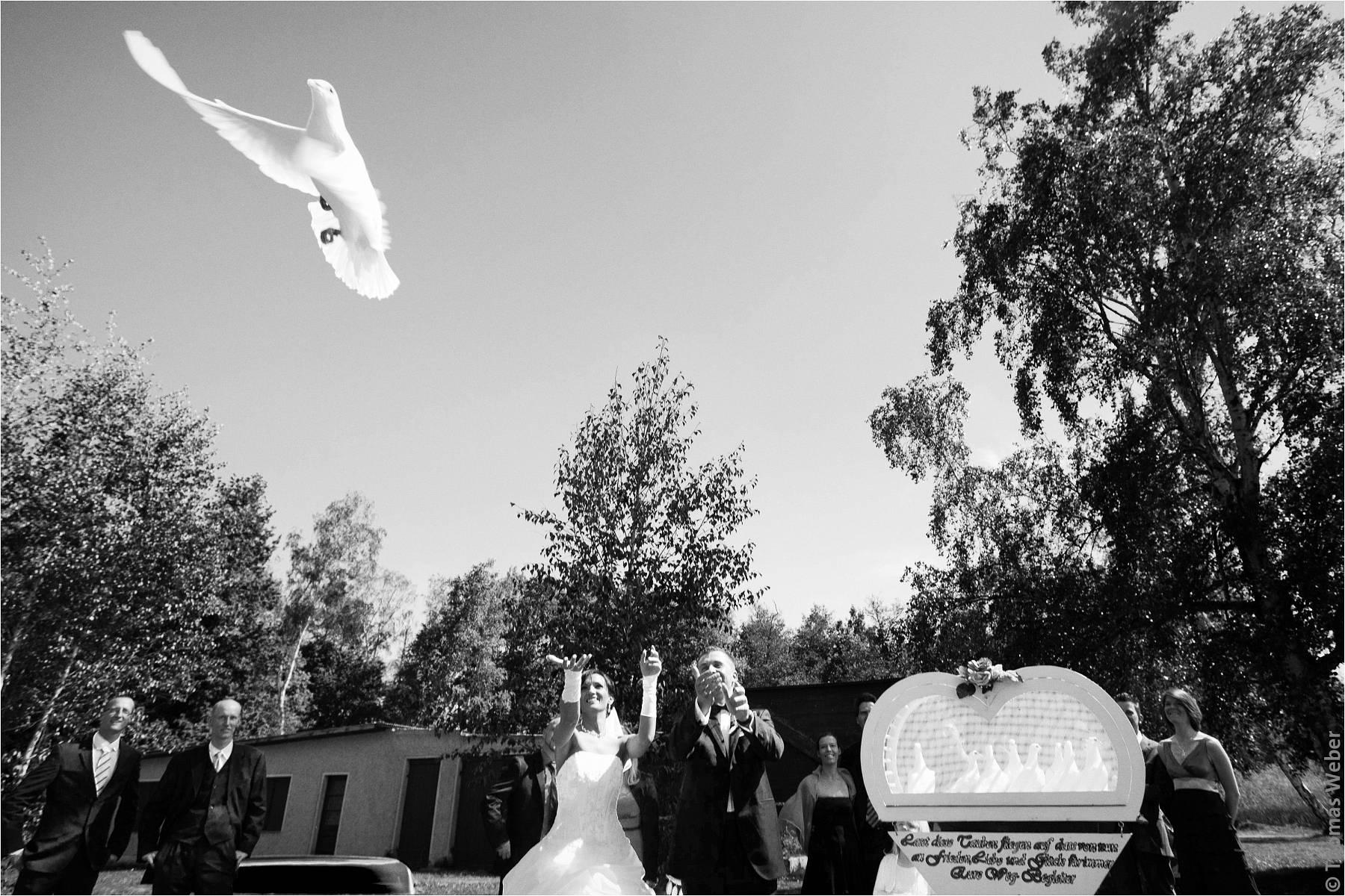 Hochzeitsfotograf Rangsdorf (Berlin): Hochzeit auf der Insel Falkenstein in Rangsdorf nahe Berlin (22)