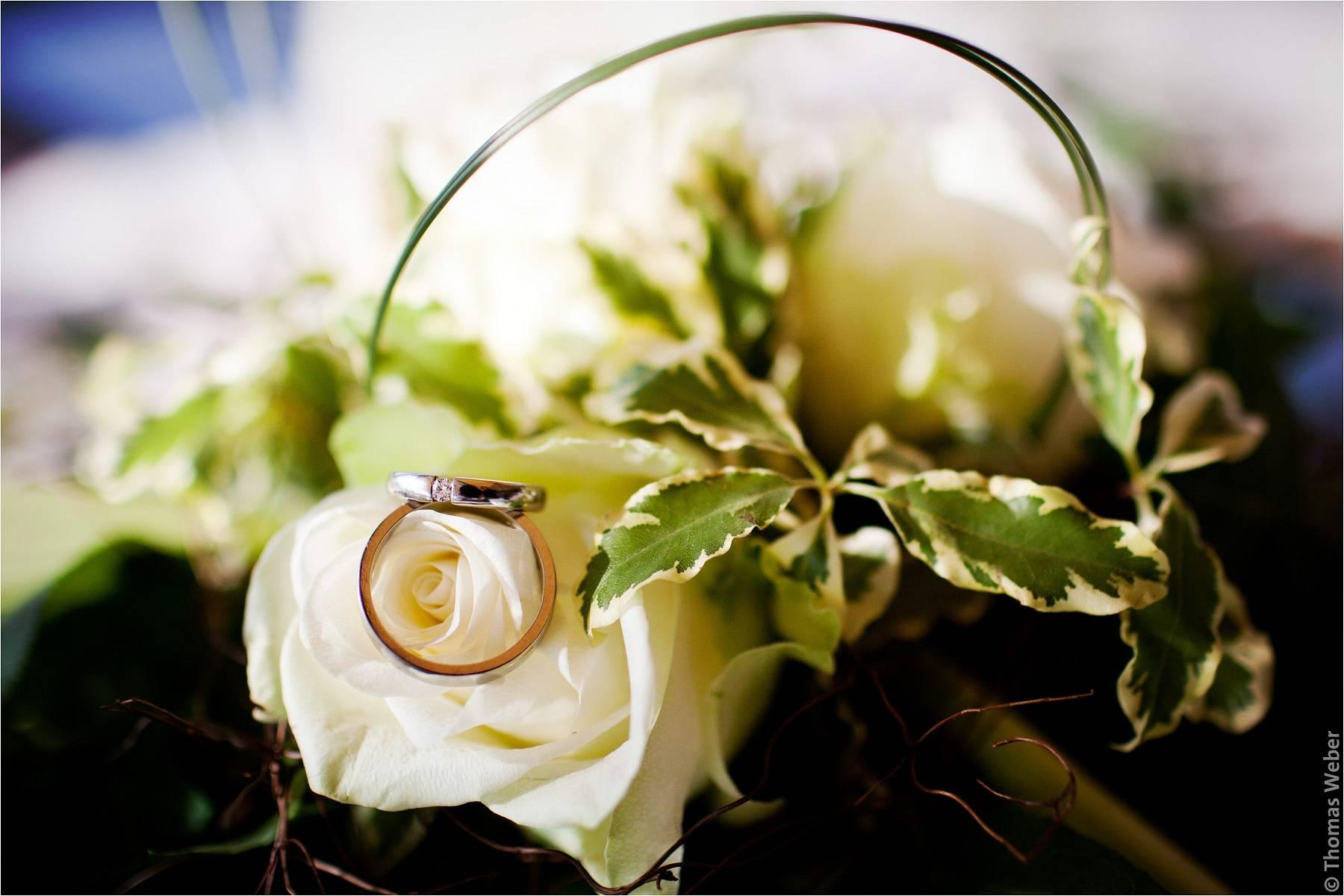 Hochzeitsfotograf Rangsdorf (Berlin): Hochzeit auf der Insel Falkenstein in Rangsdorf nahe Berlin (30)