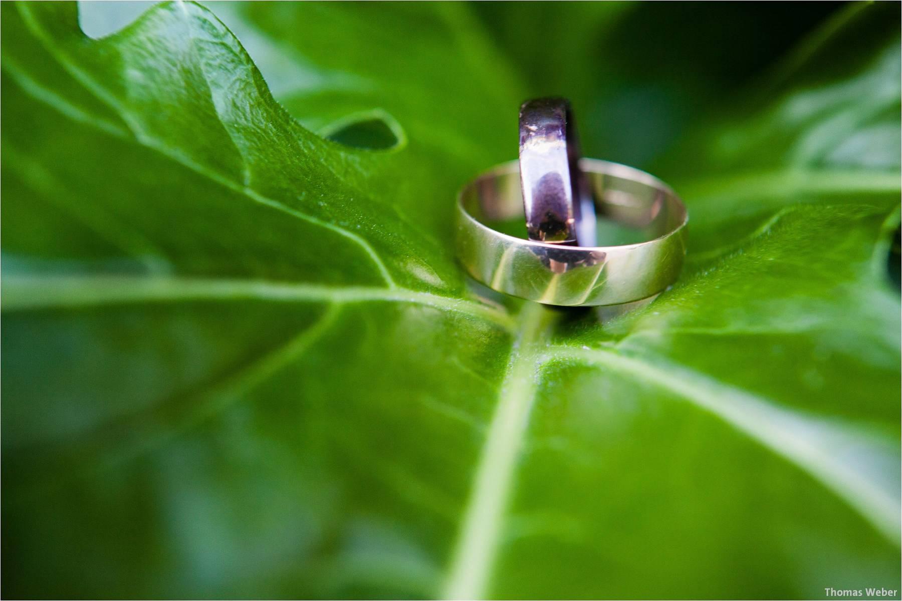 Hochzeitsfotograf Adare (Irland): Irische Hochzeit auf der grünen Insel (14)